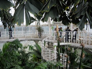Top of the Palm House