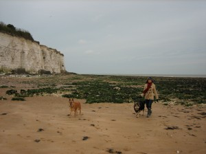 Rocky, Stella and Me on Broadstairs Beach